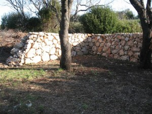 zid m z 039 (Small)