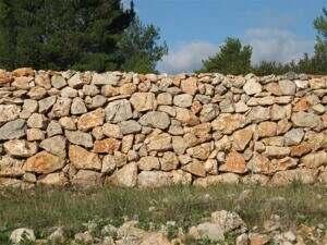 zid m z 047 (Small)